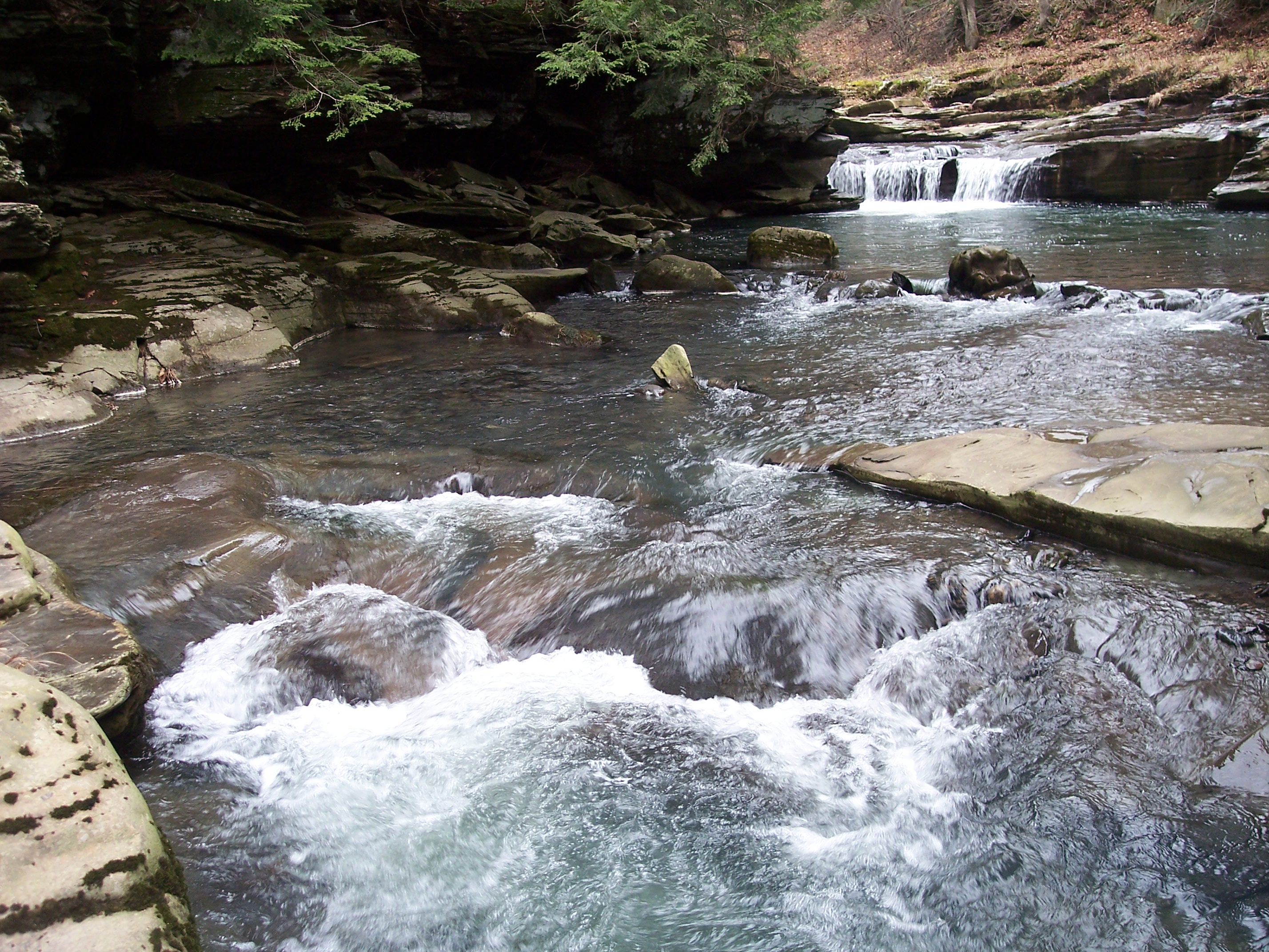 Stony Fork along the Mid State Trail | Endless Mountains