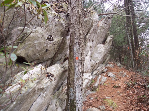 Slanted rock outcrops along the trail