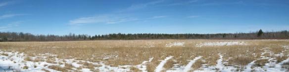 Catlin Meadows