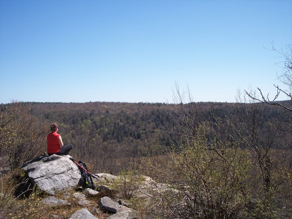Coyote Rocks