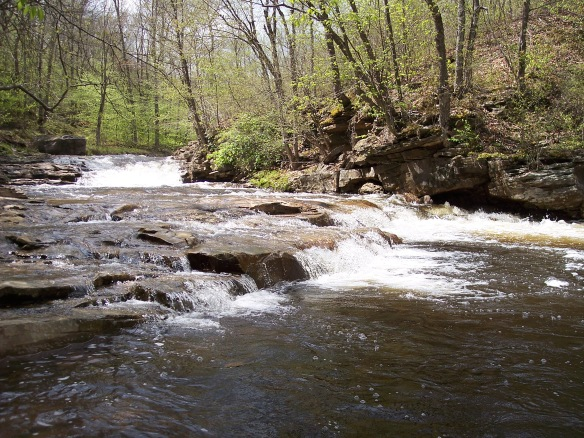 Rapids on the Mehoopany Creek
