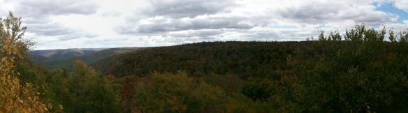 More views