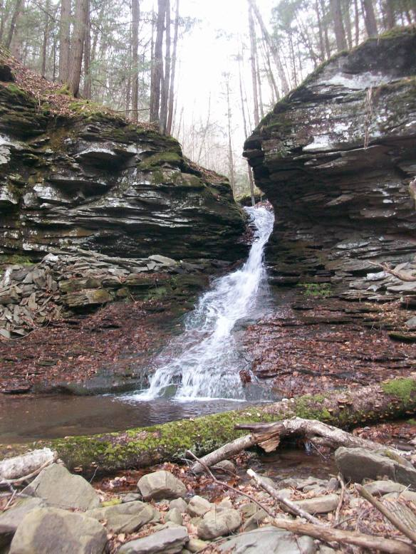 Falls on Huckle Run