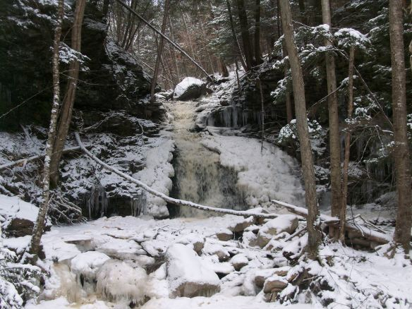 Falls on Red Brook