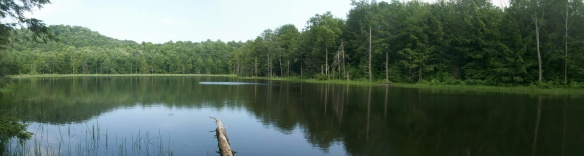 Big Hollow Pond