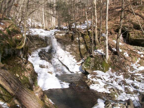 White Brook Falls