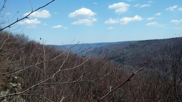 Looking down the Mehoopany Creek canyon
