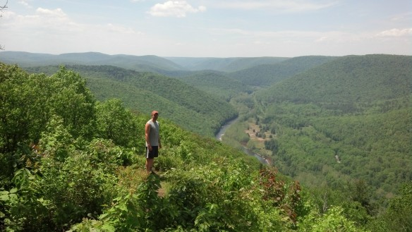 View of Pine Creek Gorge from Gillespie Point