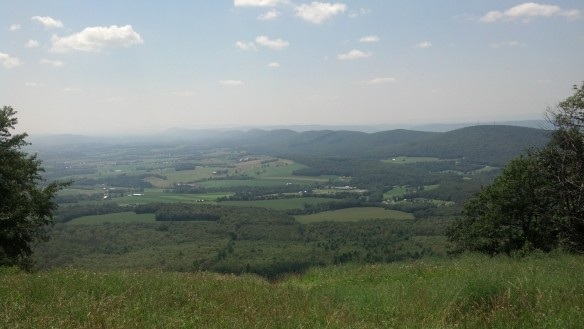 View from the Weiser State Forest