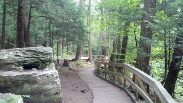 Boardwalk above the gorge