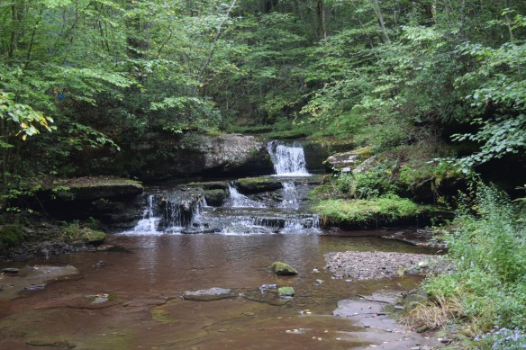 Morris Run Falls