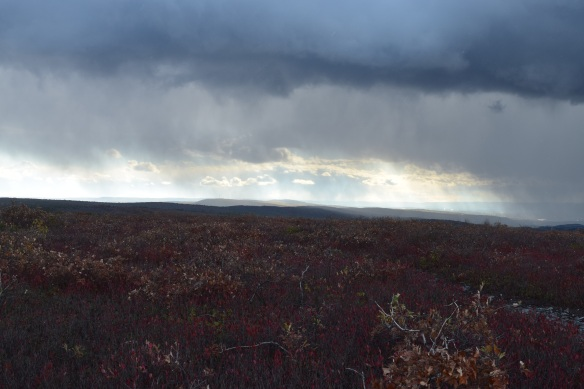 Passing storm on the exposed ridge of the beautiful Blueberry Trail