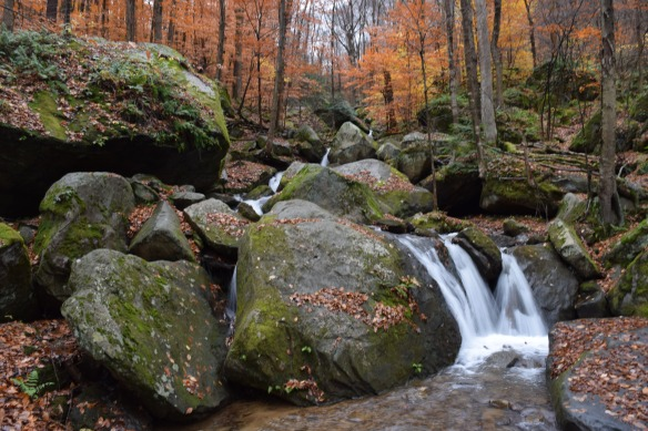 Bent Run Waterfalls