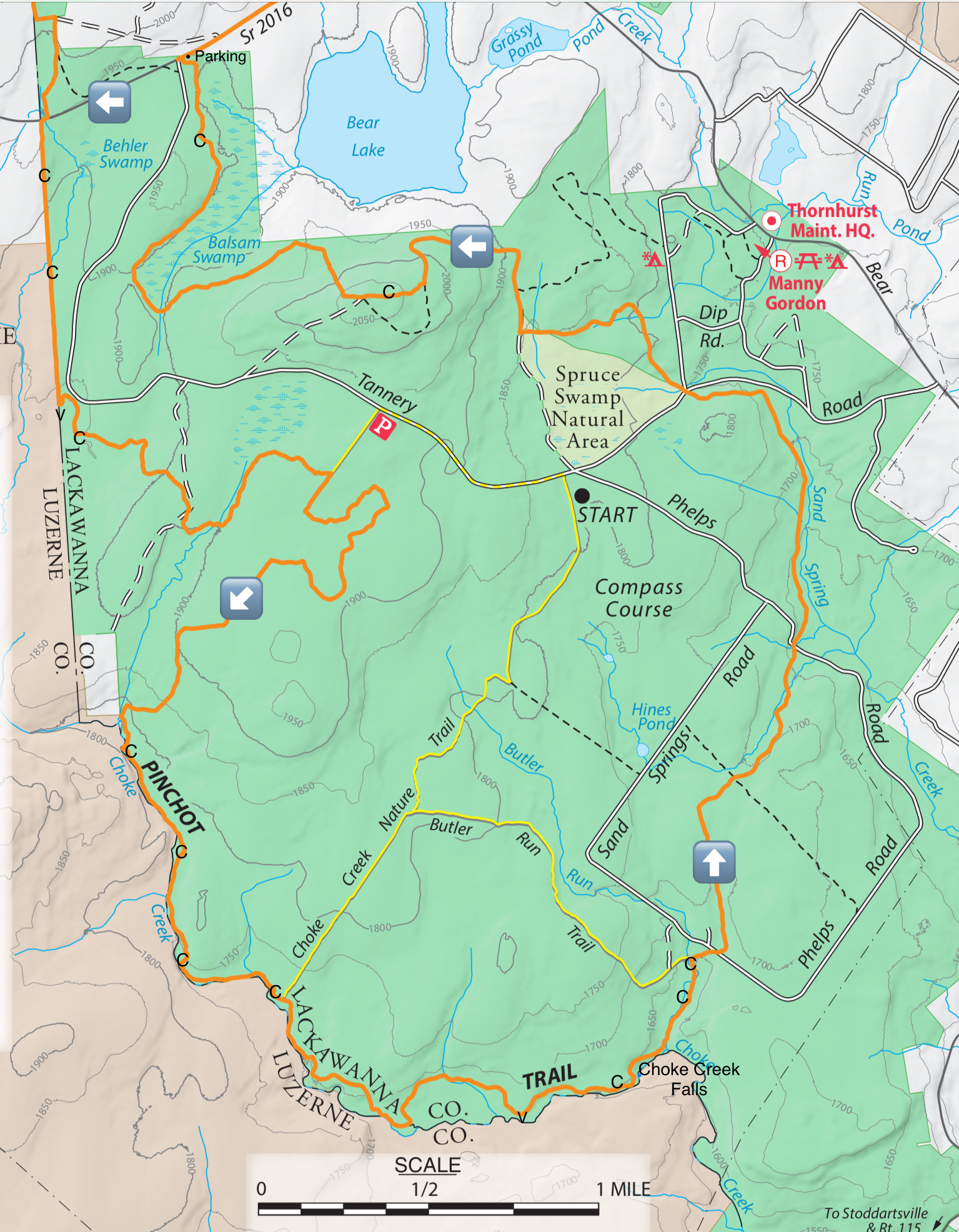 Hiking The Pinchot Trail South Loop Pinchot State Forest Endless Mountains Experience
